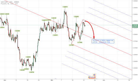 USDCAD: PITCHFORK - Forex USDCAD Weekly Analysis 21st - 25th May 2018