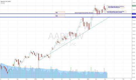 AAPL: Bullish 2 Yr Weekly AAPL Chart