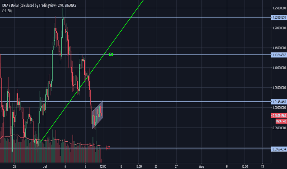 IOTAUSD: IOTA/USD Bearish Flag Pattern