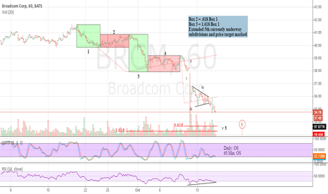 BRCM: Extended 5th wave in motion