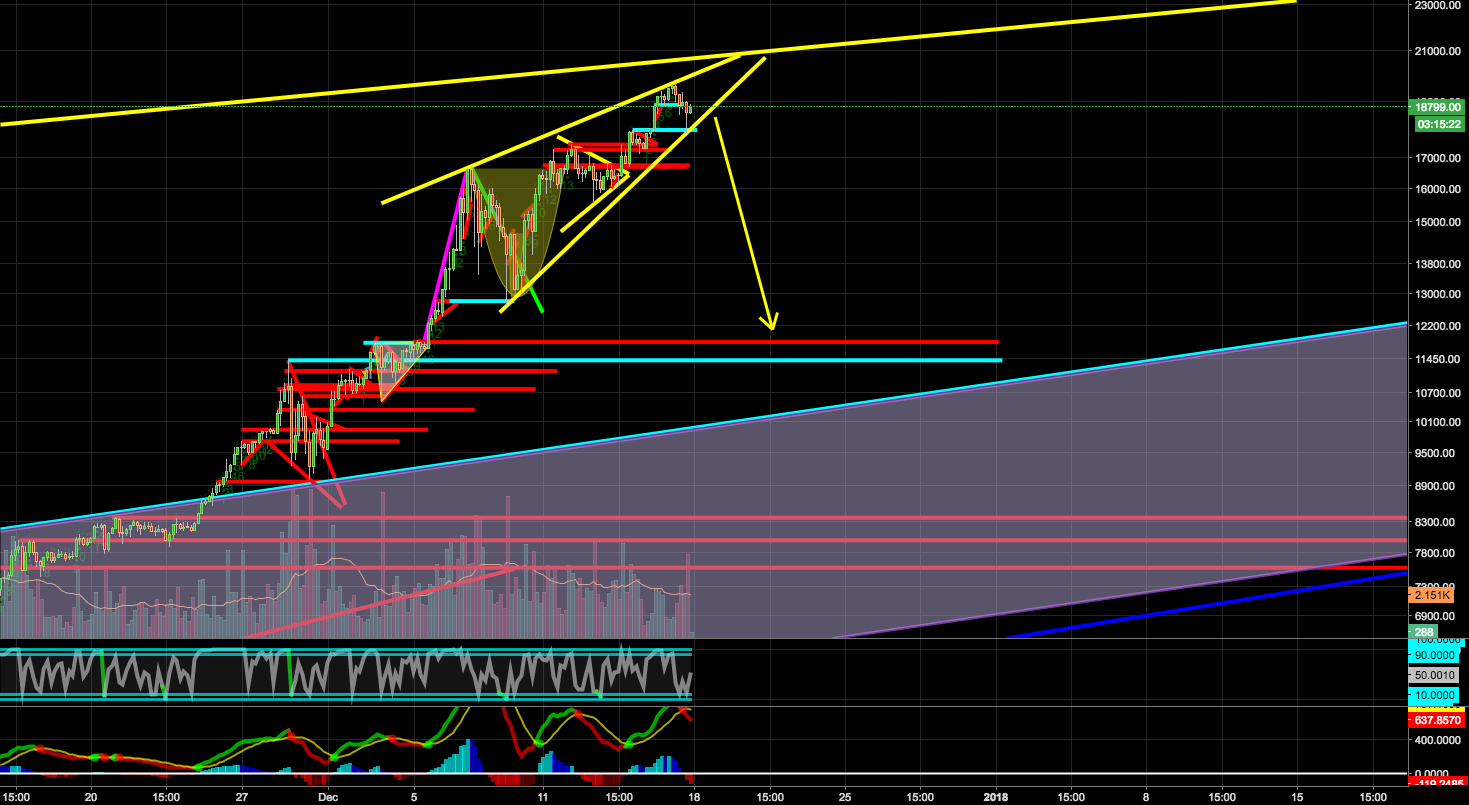 BTC Giant Rising Wedge?