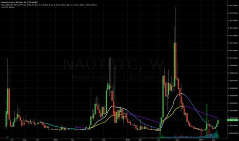 NAUTBTC: Holding