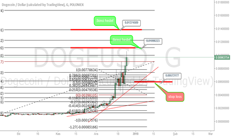 DOGEUSD: doge long