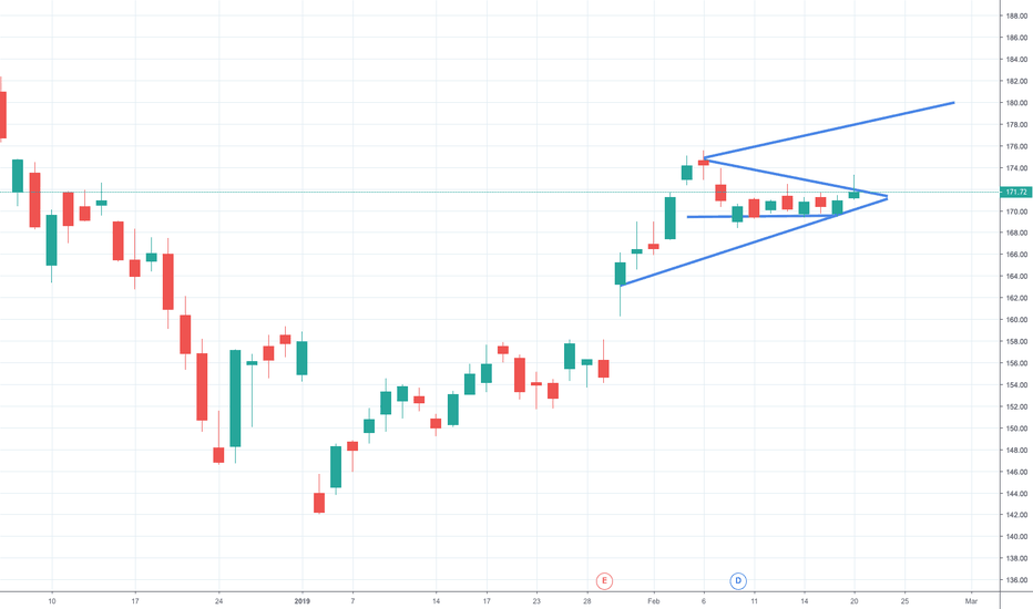 AAPL: AAPL to 180 by March 1