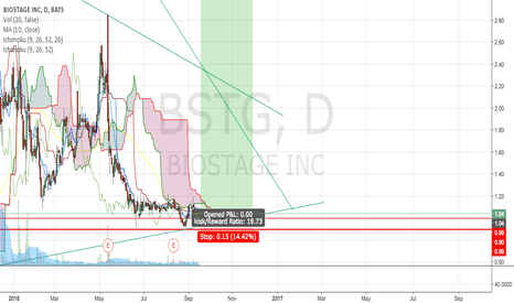 BSTG: BSTG LT swing