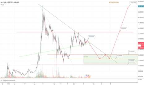 NEOUSD: Will $NEO go to ATH after the Bitcoin split @ 25-10?