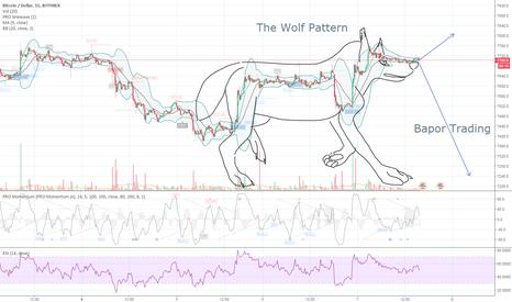 BTCUSD: The Wolf Pattern
