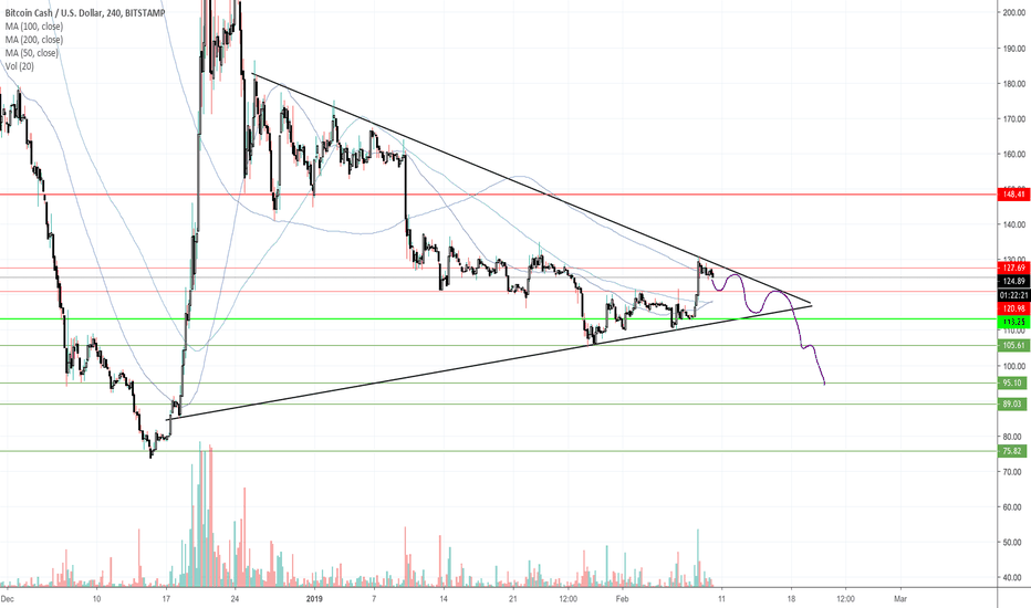 BCHUSD: BCH Triangle Pattern New Formation