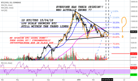 BTCUSD: BTC/USD LOG SCALE SO MANY OPINIONS ONLY 2 OUTCOMES WHY THE HYPE