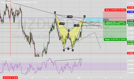 NZDUSD: NU Bearish Bat