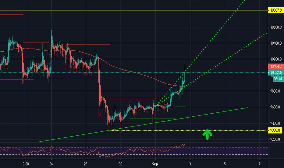 btc eur kraken tradingview