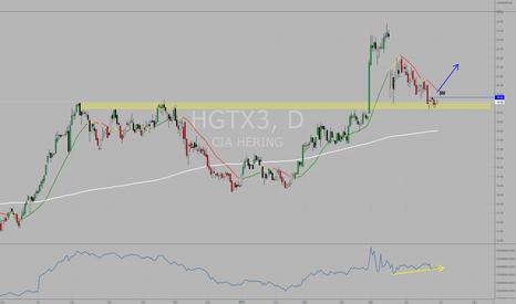 HGTX3: #HGTX3 Diário: divergência de alta em cima de forte suporte