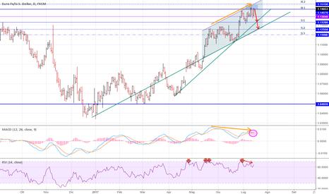 EURUSD: EUR/USD Giornaliero [Short] - Pivot Points - Divergenze