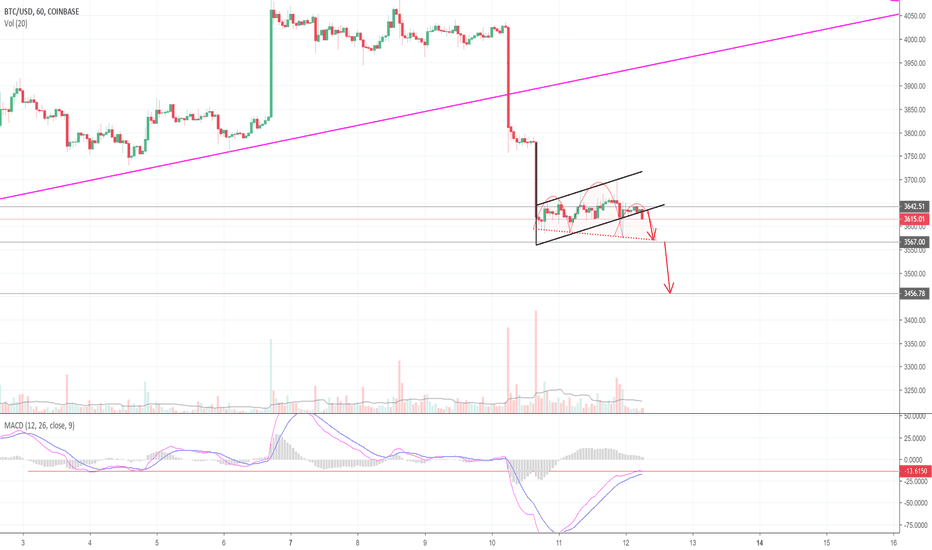 BTCUSD: 10 Million Views & Bitcoin Preps For Another Fall! (BTC)