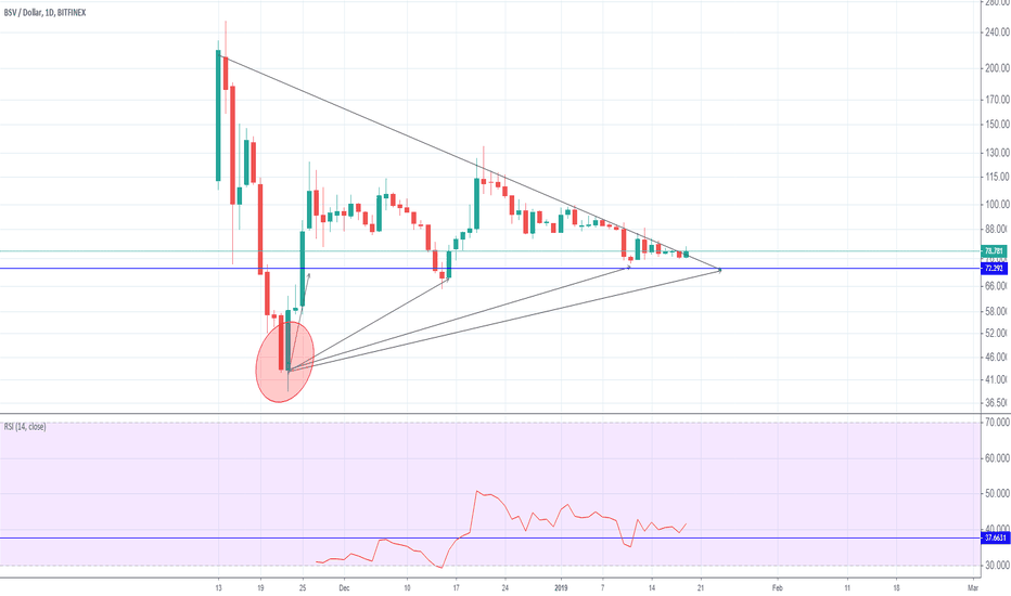 BSVUSD: bsv has support line. see what is next.