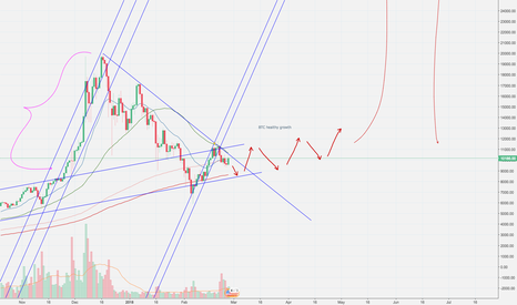 BTCUSD: Bitcoin (BTC) idea