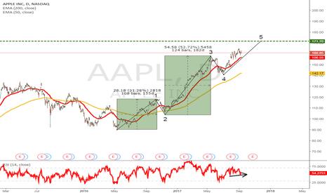 AAPL: Apple Wave 5 Incomplete ??!