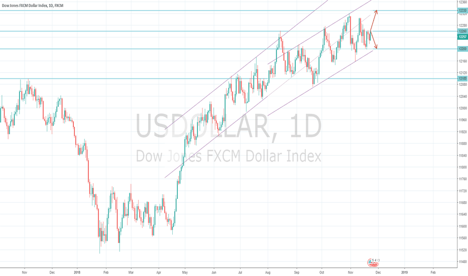USDOLLAR: US Dollar Index Macro View 25/11 - Bull or Bear?
