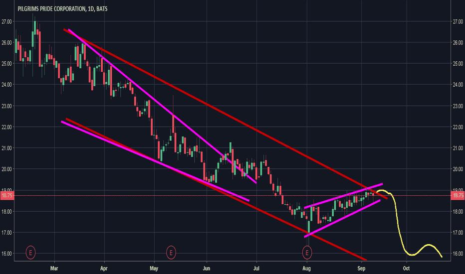 PPC: Bearish overall channel; Slight rising wedge