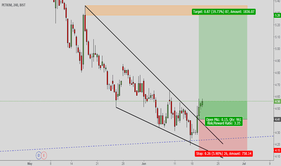 PETKM: PETKM, Wedge Formation and Price Target