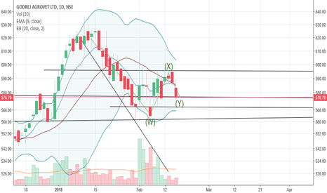GODREJAGRO: Possible rally