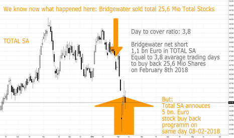 FP: BRIDGEWATER vs. TOTAL SA
