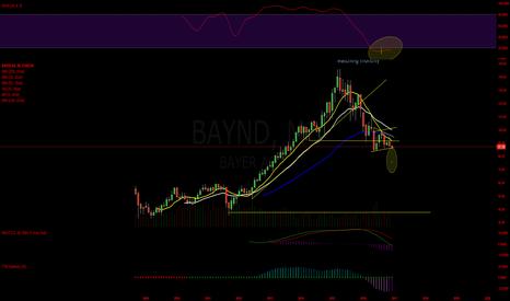 BAYN: BAYND monthly