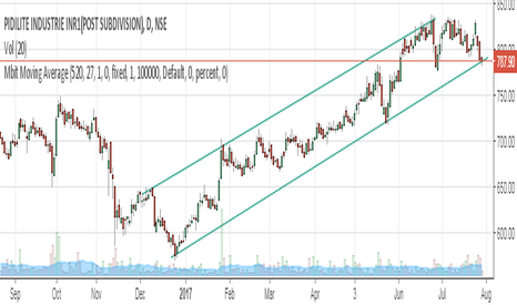 PIDILITIND: PIDILITE at bottom of channel
