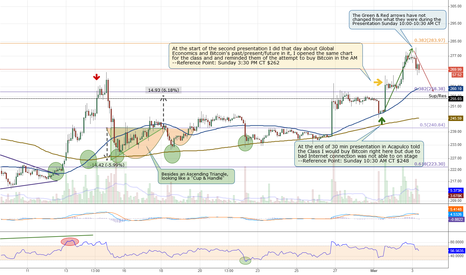 BTCUSD: Bitcoin might pull back to $260