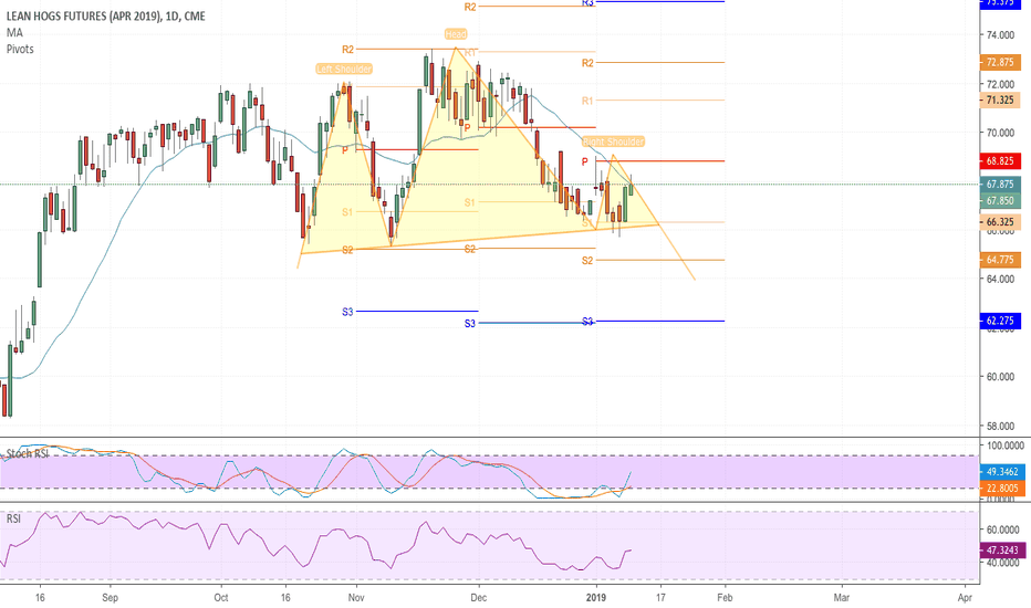 HEJ2019: Head and shoulders developing on April Hogs