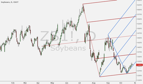 ZS1!: Long Soyobean