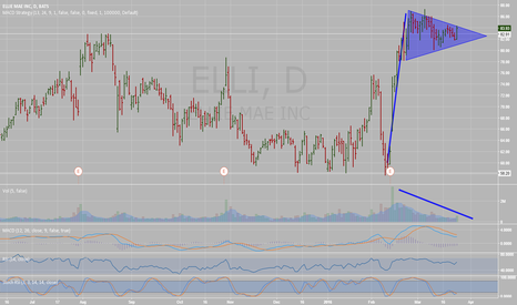 ELLI: Bull Flag on Elil