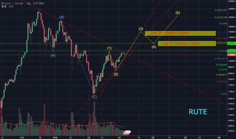 BTCUSD: Bit Coin : Elliott wave (long-term)