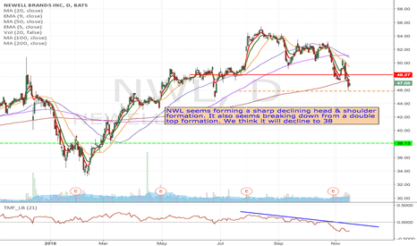 NWL: NWL - $45 March Puts looking very interesting