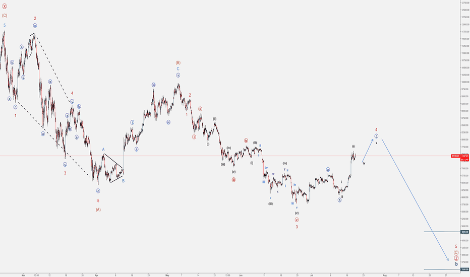 BTCUSD: BTC/USD - The Bull Trap and the last sell-off