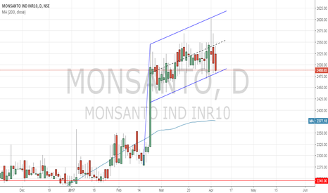 MONSANTO: Monsanto Daily with Flag pattern