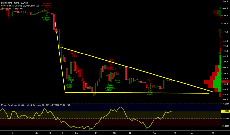 BTC1!: Big Bear Pennant - His claws getting ready, are you ready?