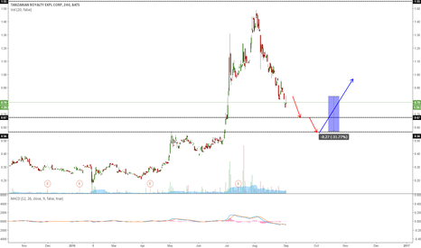 TRX: TRX: EXPECTING MORE DOWNSIDE