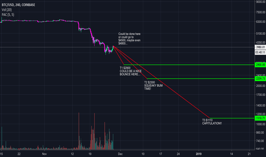 BTCUSD: Were in the 4th of 5 waves.