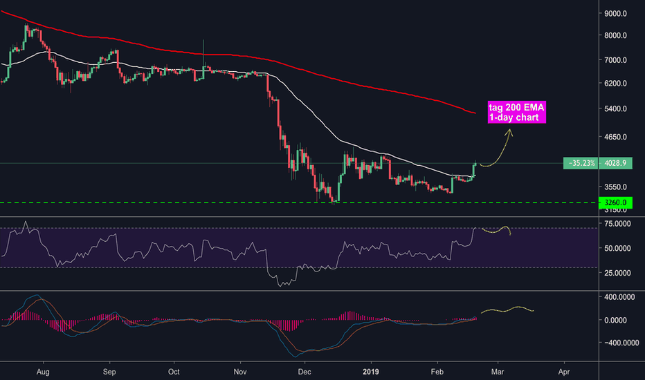 BTCUSD: BTC pump! BAKKT is in buying action for March release