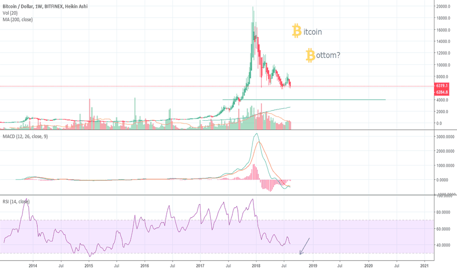 BTCUSD: The Bitcoin bottom could be months away :(