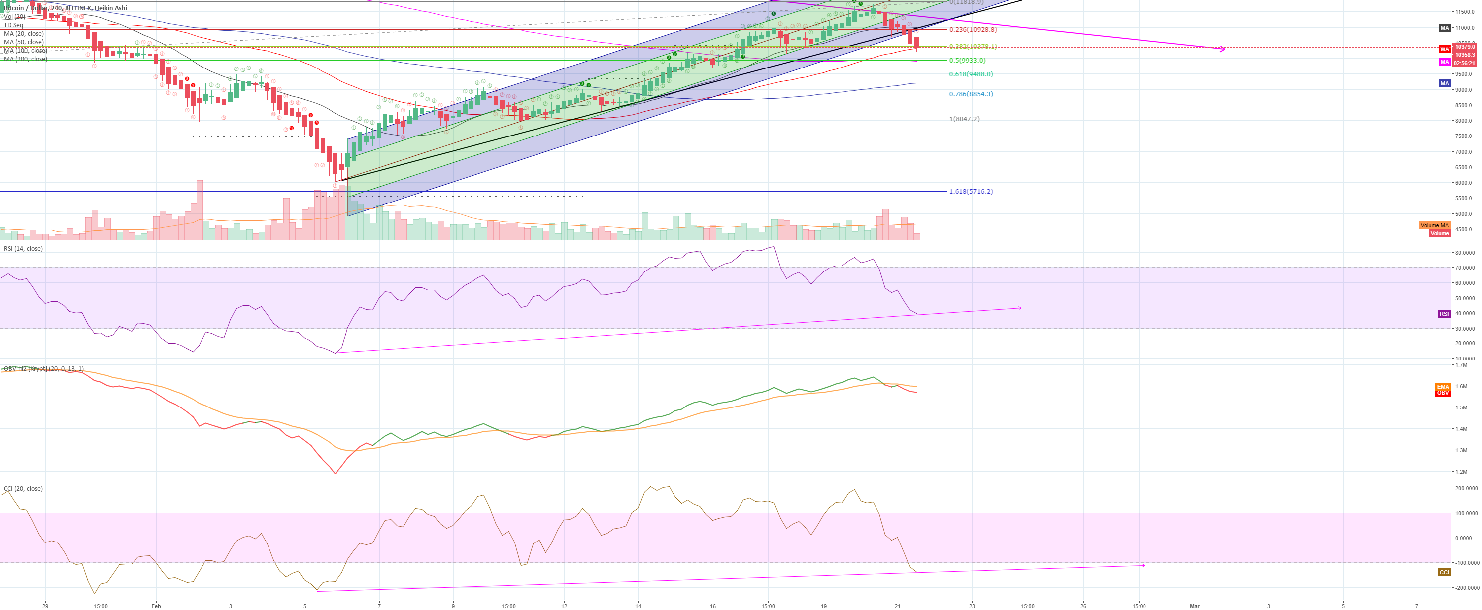 BTC -- I warned you about the bulltrap, what's next?