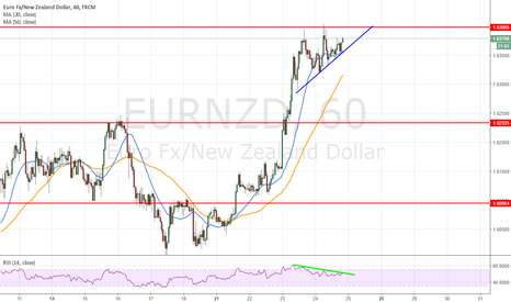 EURNZD: Bearish divergence h1 + oversold h4 and daily chart basic view