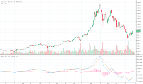 BTCUSD: BTC上涨趋势以形成大力看好