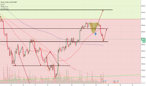 BTCUSD: BTC:USD 1 hour chart DAILY UPDATE (day 29)