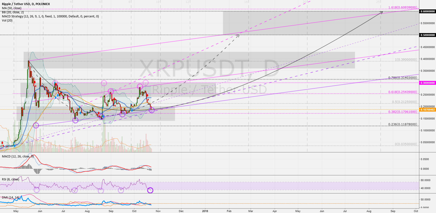 XRPUSD - RippleUSD (1D): The next upswing could be  > 0.3 USD