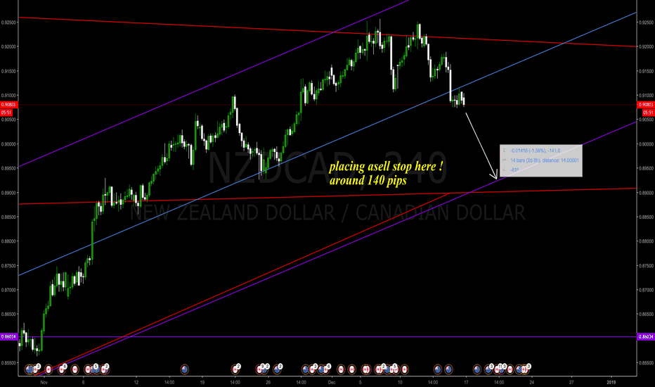 NZDCAD: placing a sell stop here