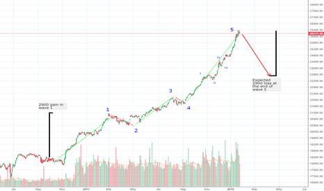 DJI: DJI Bear Wave Coming
