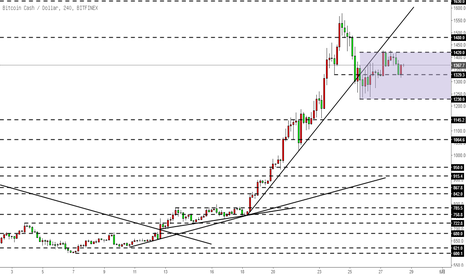 BCHUSD: 比特币现金BCH-走势效仿BTC,震荡中