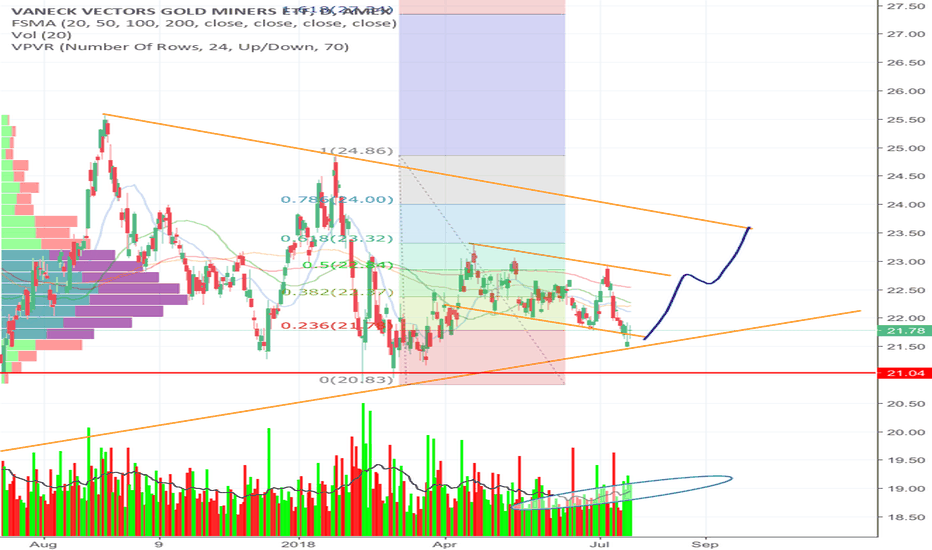 GDX: Miners ready for lift-off (VPA)